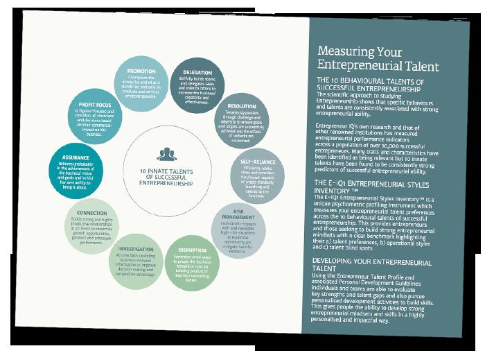 Entrepreneurial report